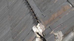 奈良市 雨漏り調査4