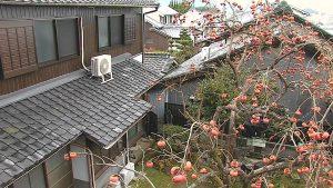 奈良県桜井市 築30年以上の1階の瓦屋根から雨漏り調査